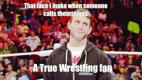 A True Wrestling Fan