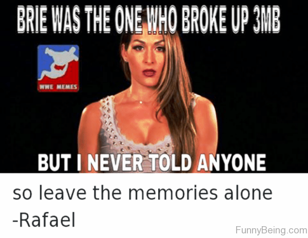 Brie Was The One Who Broke Up 3MB