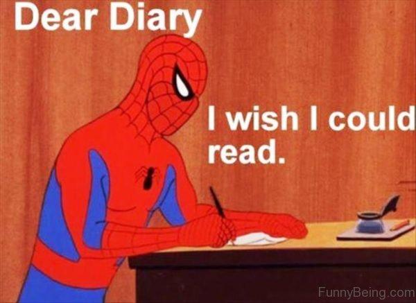 Dear Diary I Wish