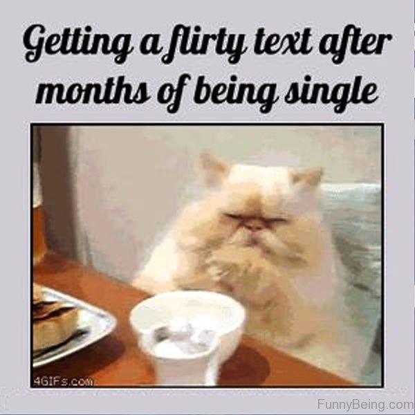 Getting A Flirty Text After Months