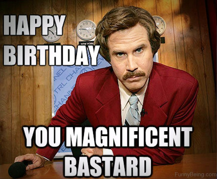 Happy Birthday You Magnificent Bastard 48 amazing birthday memes