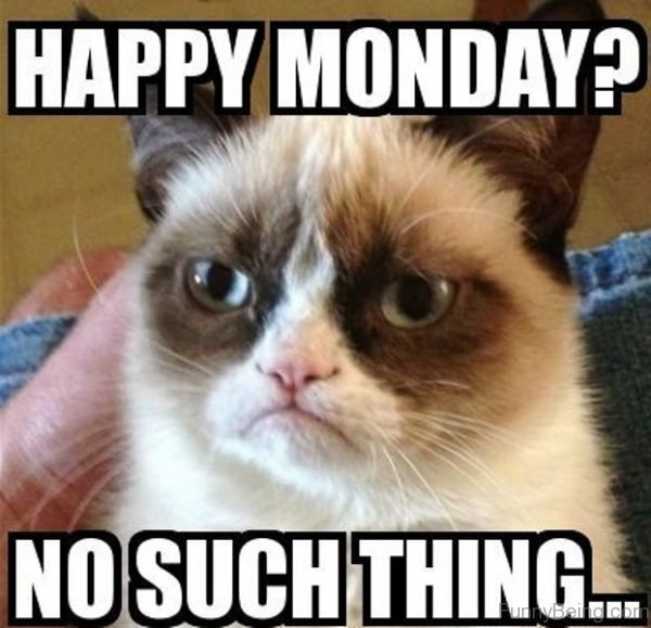 Happy Monday No Such Thing