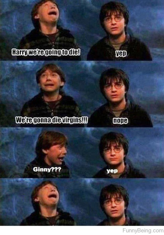 Harry We're Going To Die