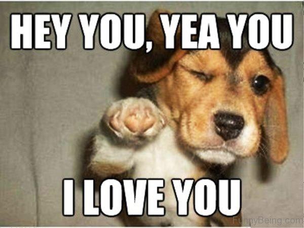 Hey You, Yea You