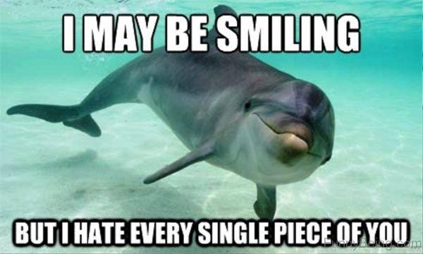 I May Be Smiling