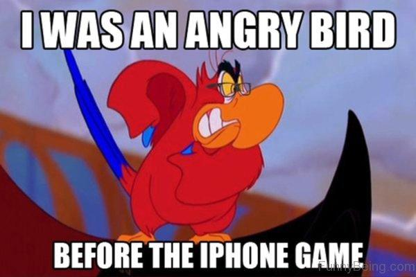 I Was An Angry Bird