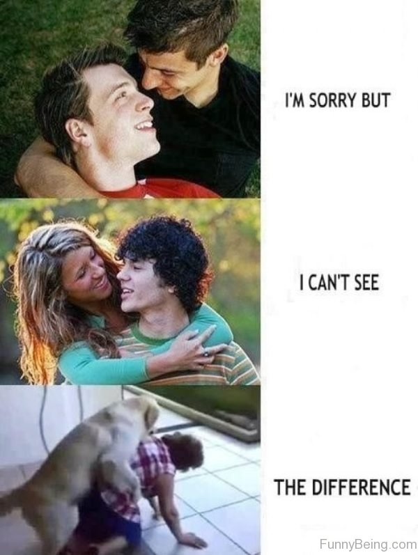 I'm Sorry But I Can't See The Difference