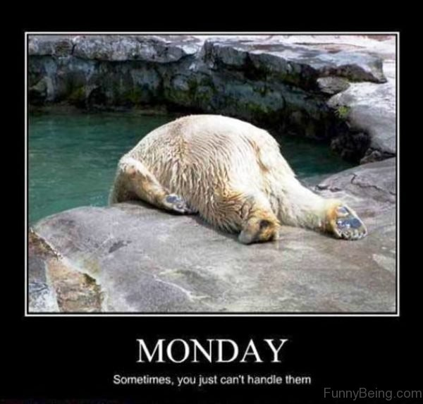 Monday Sometimes You Just Can't