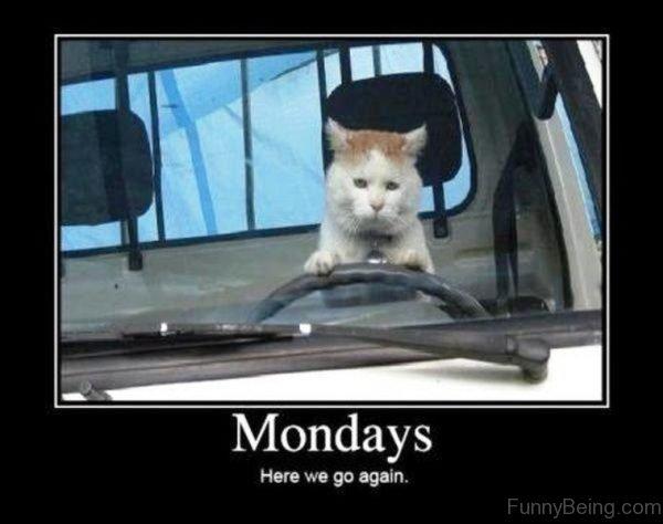 Mondays Here We Go Again