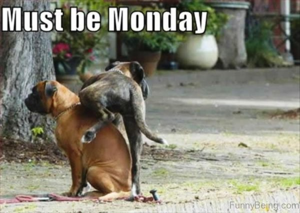 Must Be Monday