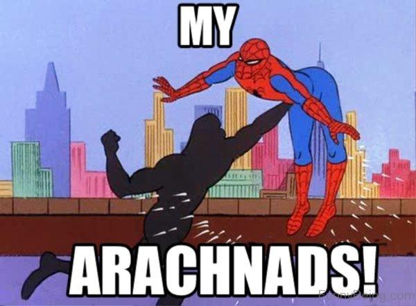 My Arachnads