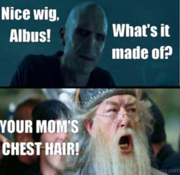 Nice Wig Albus
