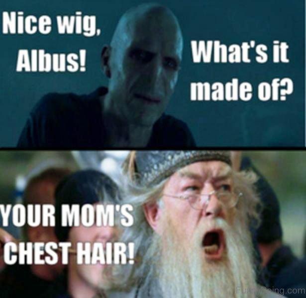 52 Top Harry Potter Memes
