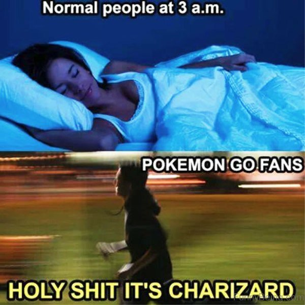 Normal People Vs Pokemon Go Fans