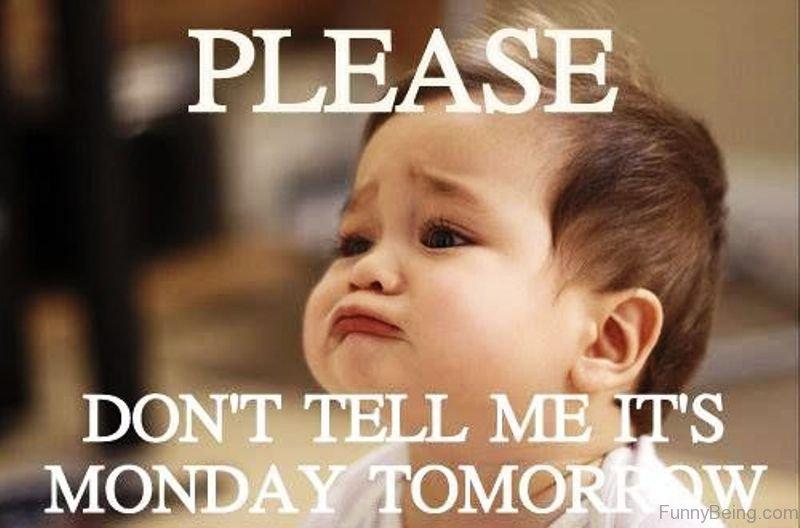 Happy Monday Meme Funny : Best collection monday memes