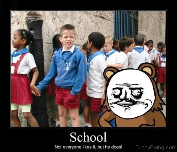 School Not Everyone Like It