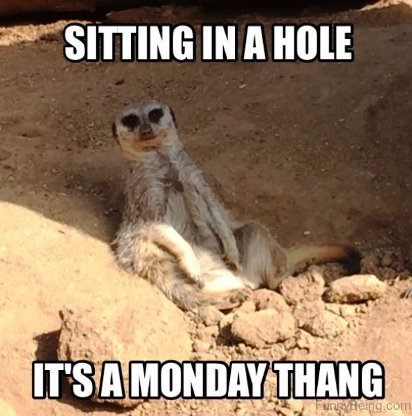 Sitting In A Hole