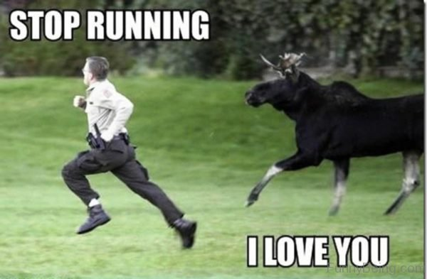Stop Running I Love You