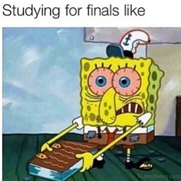 Studying For Finals Like 600x600 32 ultimate spongebob memes