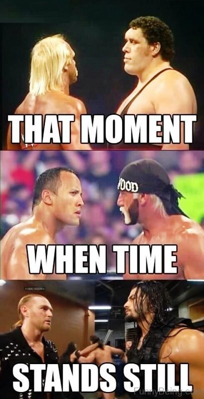 Funniest Wwe Memes On The Internet : Funny wwe memes