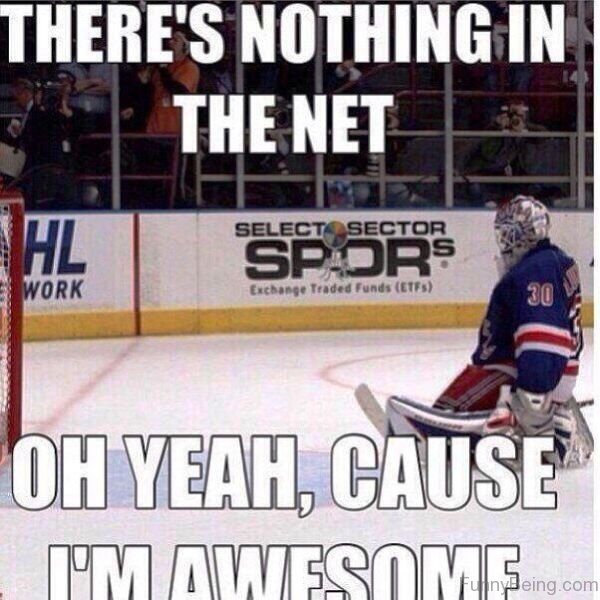 Theres Nothing In The Net 55 amazing hockey memes