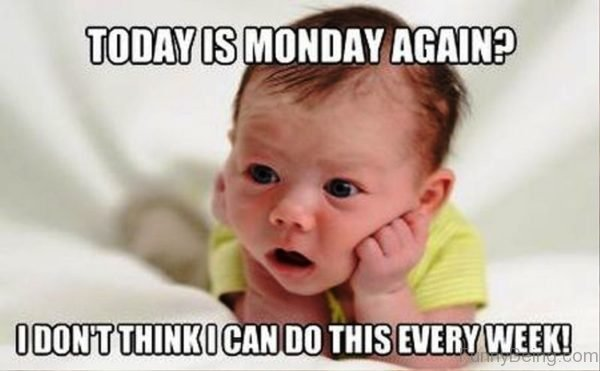 Funny Tomorrow Is Monday Meme : Best collection monday memes