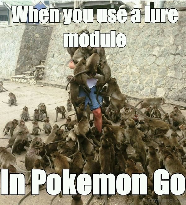 When You Use A Lure Module