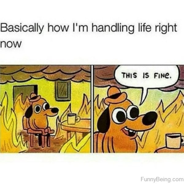 Basically How I'm Handling Life