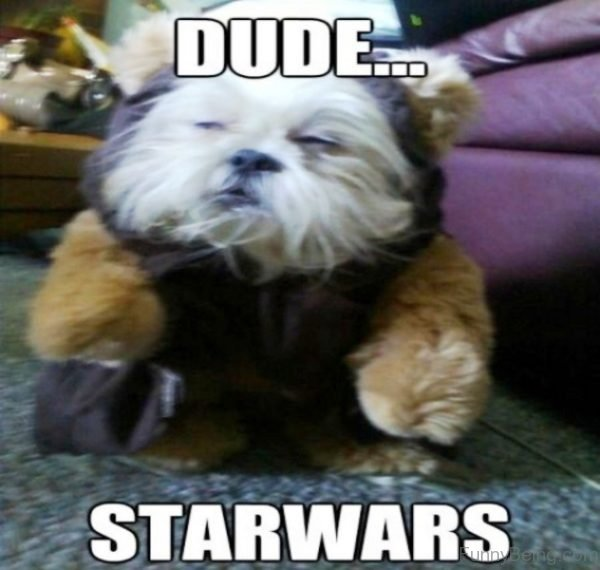 Dude Starwars