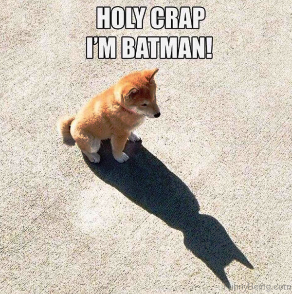 Holy Crap I'm Batman