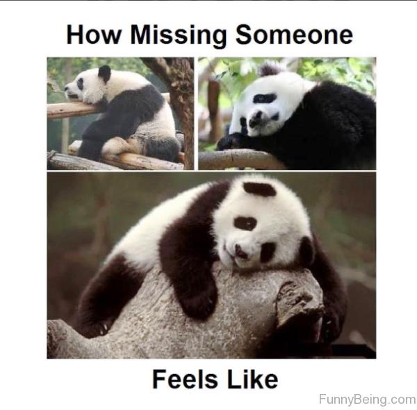 How Missing Someone Feels Like