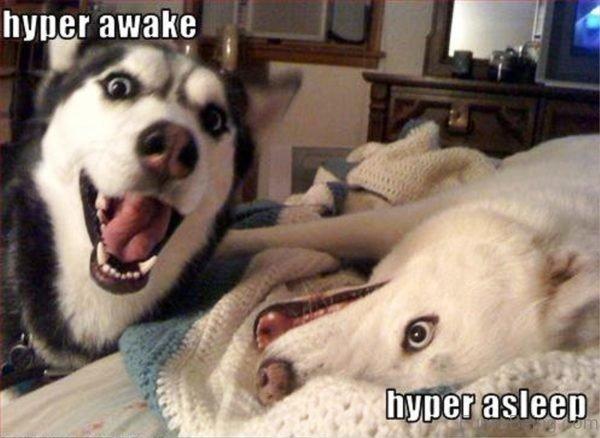 Hyper Awake