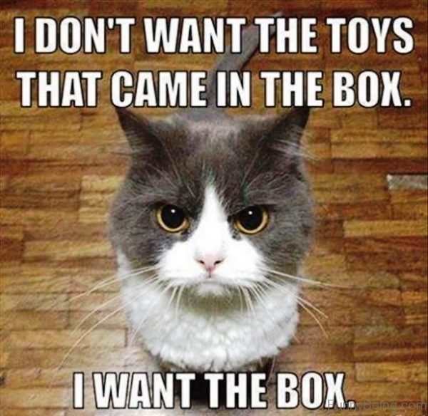 I Don't Want The Toys