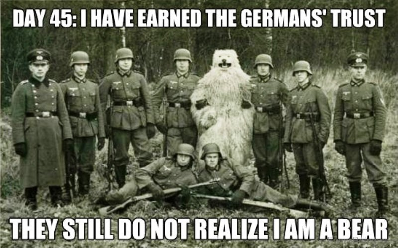 I Have Earned The Germans Trust 81 unique army memes