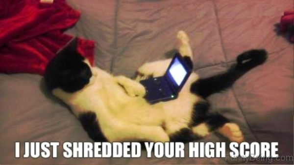 I Just Shredded Your High Score