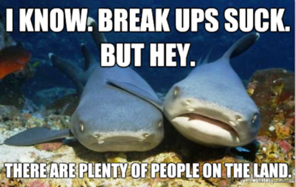 I Know Break Ups Suck