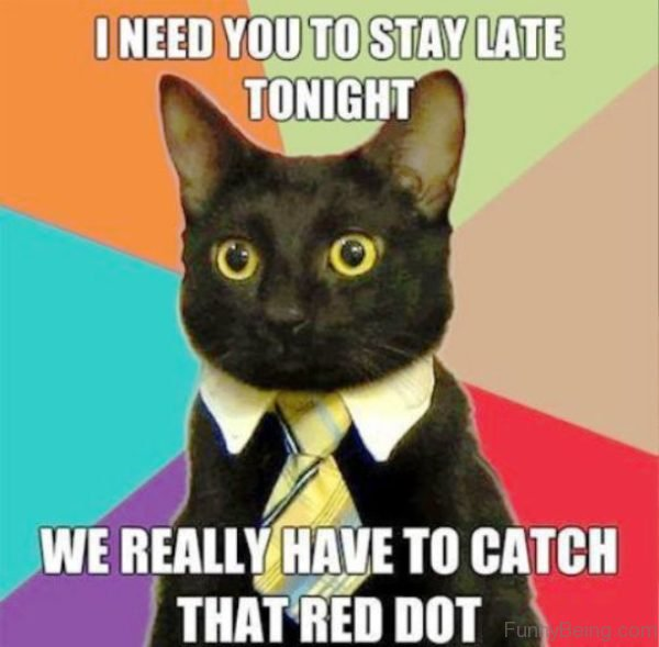 I Need You To Stay Late Tonight
