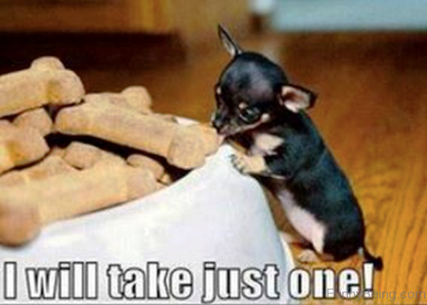 I Will Take Just One