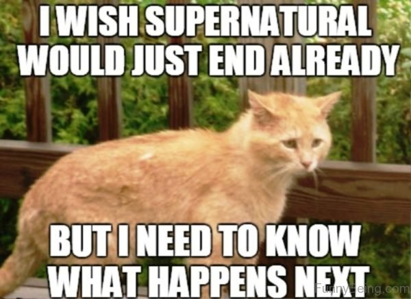 I Wish Supernatural Would Just
