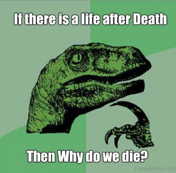 If There Is A Life After Death