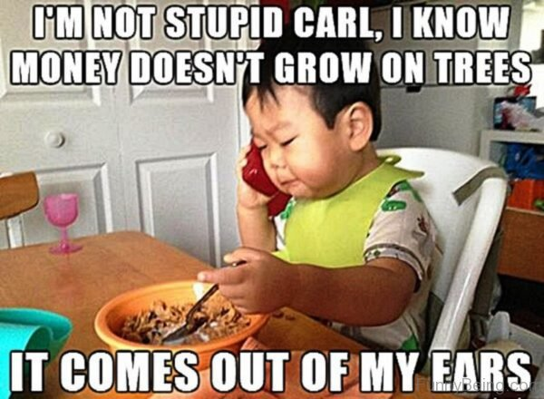I'm Not Stupid Carl