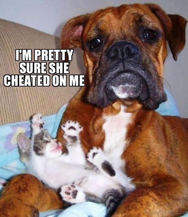 I'm Pretty Sure She Cheated On Me