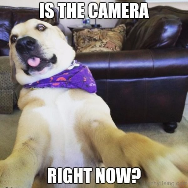 Is The Camera Right Now