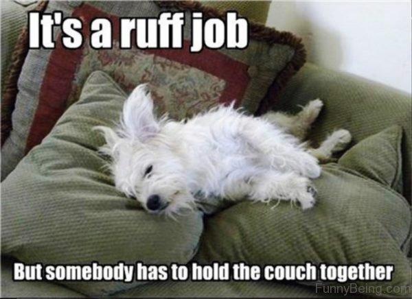 It's A Ruff Job