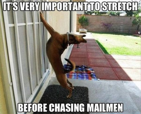 It's Very Important To Stretch