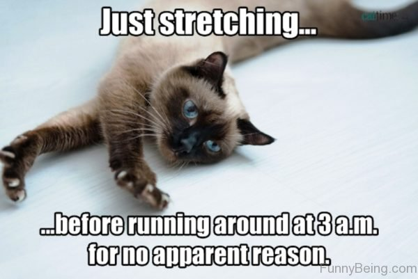 Just Stretching