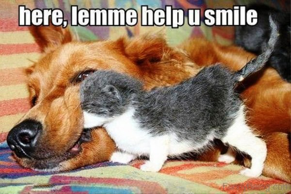 Let Me Help You Smile