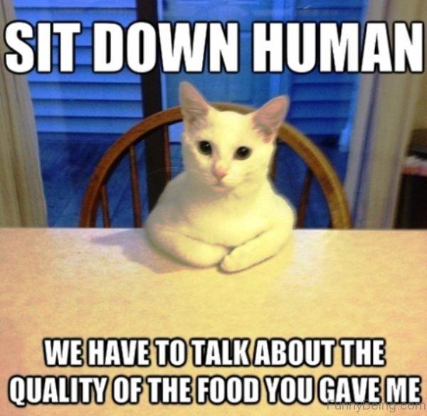 Sit Down Human