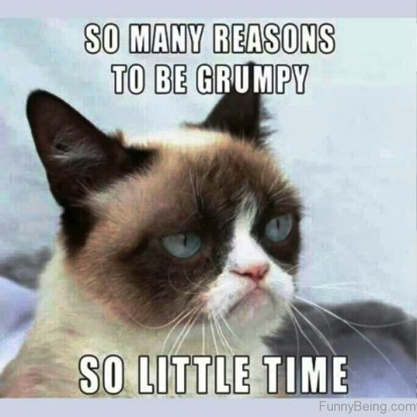So Many Reasons To Be Grumpy
