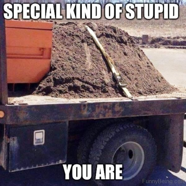 Special Kind Of Stupid You Are